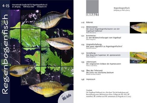 AWinternet.de - Regenbogenfische